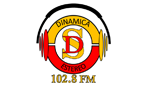 Dinamica Stereo en vivo