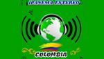 Ipanema Estéreo Colombia Te Mueve en vivo